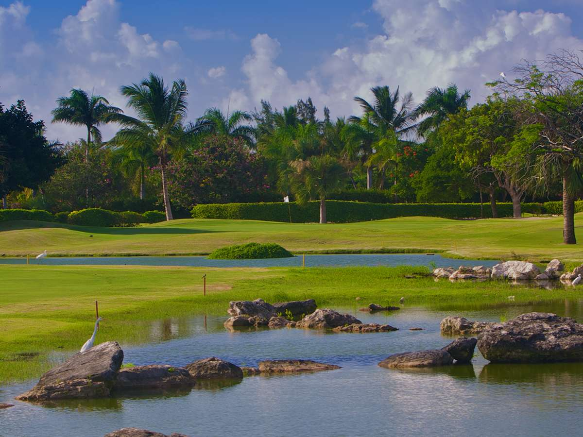 palma real cocotal golf and country club